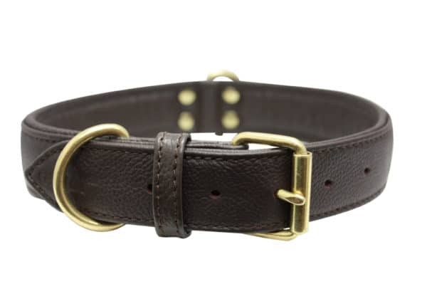 Angel Alpine padded leather dog collar with stainless steel hardware