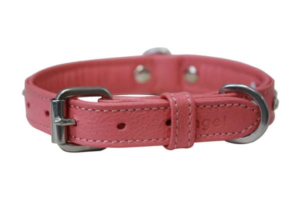 Angel Athens leather diamond dog collar