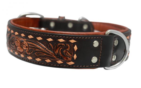 Angel Tuscon leather dog collar