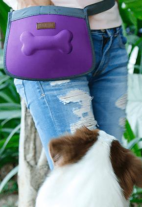 Walking Dog bag