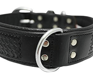 Angel leather dog collar Santa Fe
