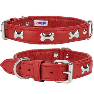 Angel Rotterdam Bones leather dog collar