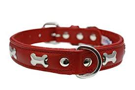 Angel Rotterdam bones leather dog collars