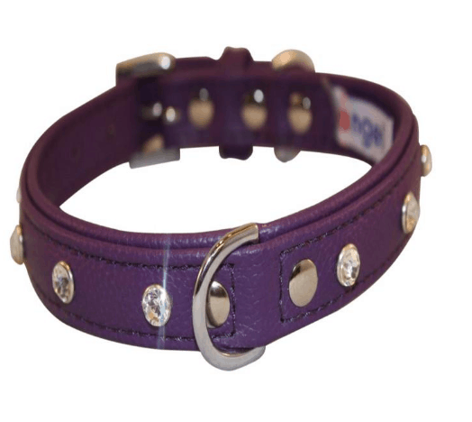 Angel Athens diamond leather dog collar