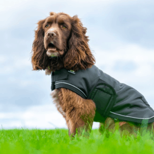 Shedrowk9 Tundra black dog coat