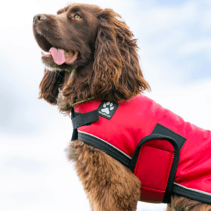 ShedrowK9 Tundra dog coat red