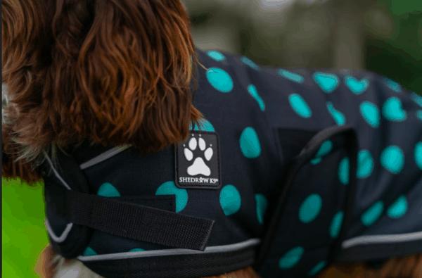 Shedrowk9 dog coat black and teal polka dot