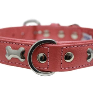 Angel Rotterdam Bone leather dog collar
