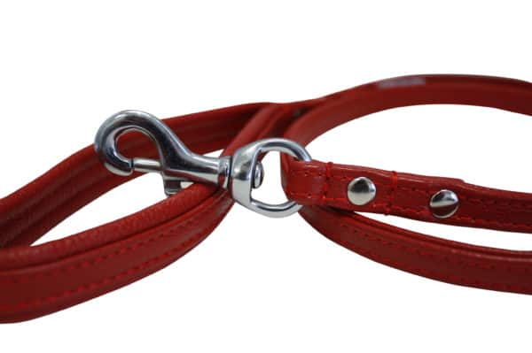 Angel Alpine leather lead with soft padded handle.