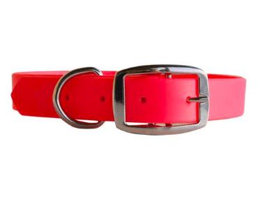 Shedrowk9 Tofino waterproof dog collar