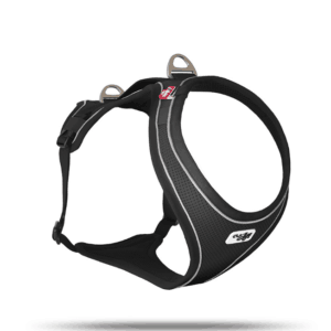 Curli Comfort dog harness