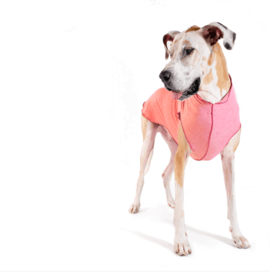 Goldpaw Sun Shield Dog tee protection