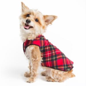 Goldpaw dog wear Stretch fleece