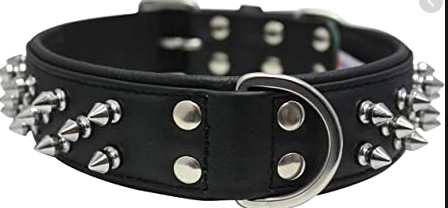 Angel Amsterdam Spiked leather dog collar c