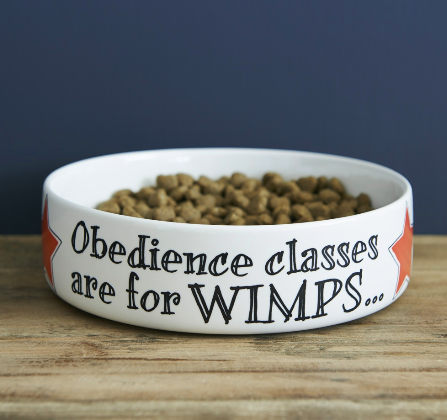 Sweet William Obedience Classes for Wimps dog bowl
