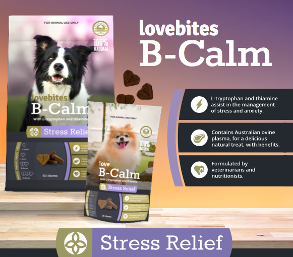 Lovebites B-Calm Natural stress Relief for dogs