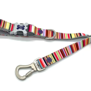 Hugo and Hudson dog lead stripe