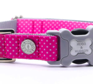 Hugo and Hudson collar Pink Polka Dot