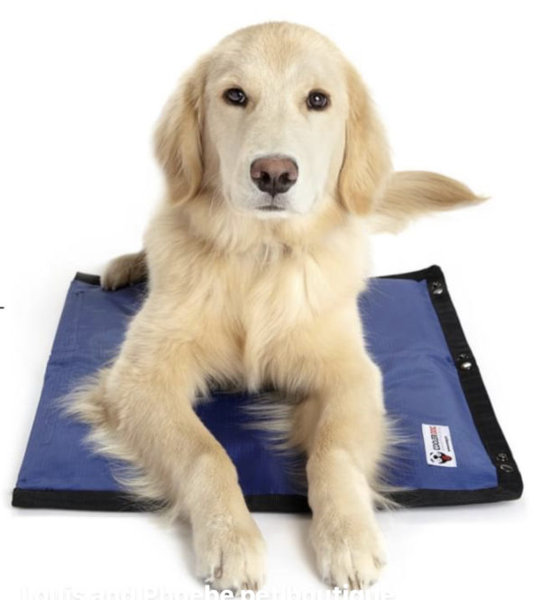 Cooler Dog cooling hydro pad