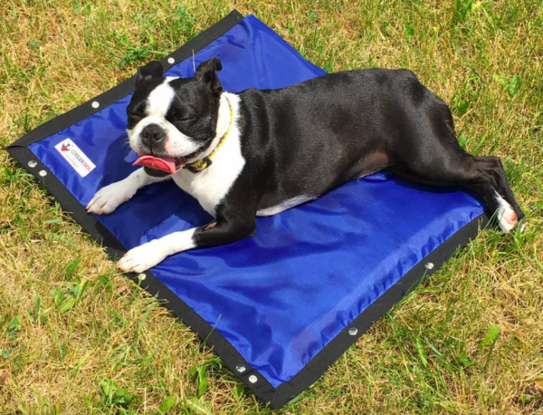 Hydro Cooling Pet Mat