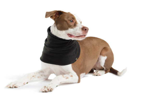 GoldPaw Reversible Dog Snood